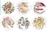 Aust Flowering Trees Set of 6 (150mm)