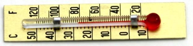 Strip Thermometer 45mm
